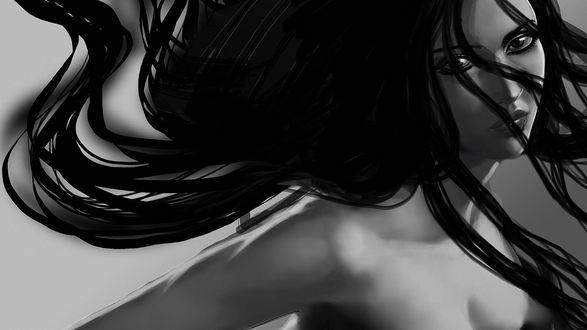 Обои Девушка с пышными развевающимися темными волосами