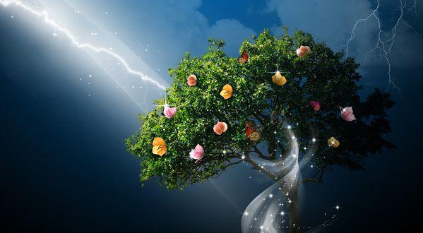 Обои Дерево с цветами