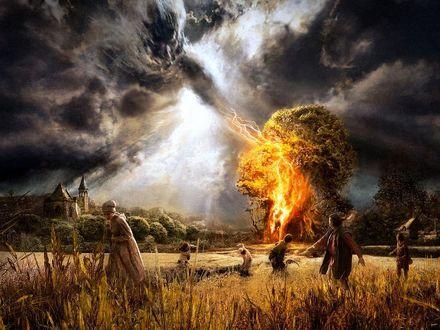 Обои Испуганные люди убегают от дерева, в которое ударила молния, во время грозы