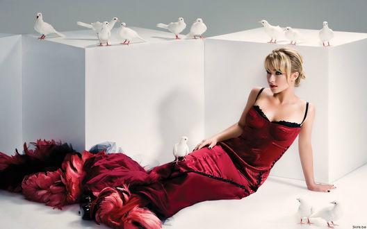 Обои Актриса Hayden Penettiere в красном платье на белом фоне
