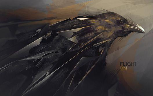 Обои Абстрактное изображение черного ворона, ELIGHT №