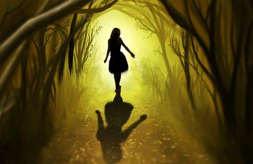 Обои Девушка идет по лесной аллее, отбрасывая большую тень