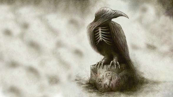 Обои Ворон с открытым скелетом, с тканью на голове, сидит на часах с циферблатом, до половины погруженных в землю