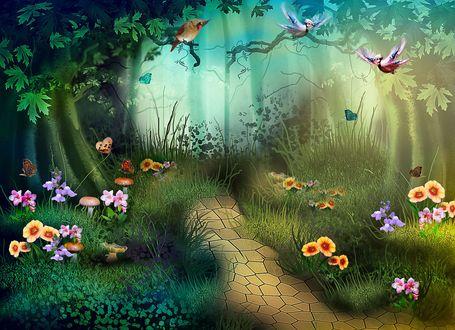 Обои Дорожка в сказочном лесу, с растущими по бокам цветами и летающими бабочками и птицами