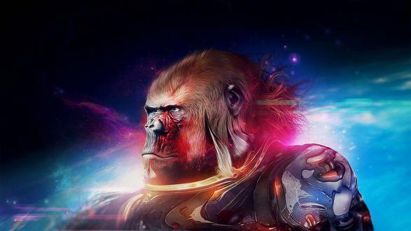 Обои Обезьяна горилла в скафандре космонавта на фоне космоса