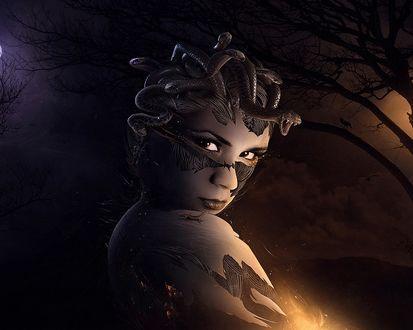 Обои Медуза Горгона со змеями вместо волос, стоит на фоне ночного леса