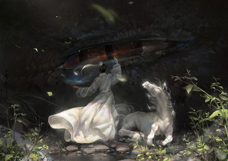Обои Девушка, белая лошадь и дракон