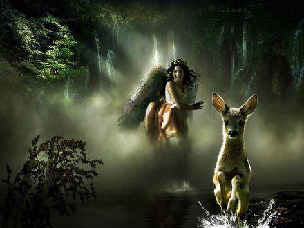 Обои Девушка ангел со смехом гонится за убегающей по воде ланью