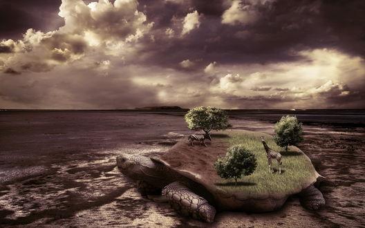 Обои По морскому песку к воде ползет огромная черепаха, на ее панцире растут трава и деревья, ходят жираф и зебра