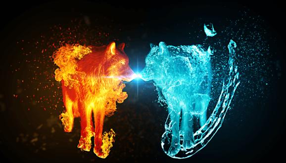 Обои Два волка, огненный и водяной стоят нос к носу