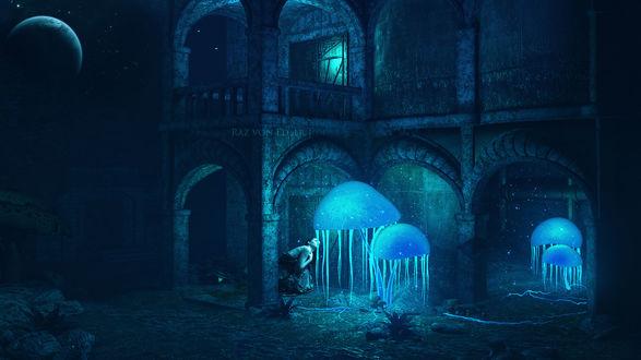 Обои Возле каменного дома ночью девушка склонилась, чтобы посмотреть внутрь фантастических парящих в воздухе в синем сиянии медуз, by RazielMB