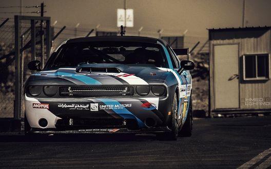 Обои Dodge challenger srt8 carshow