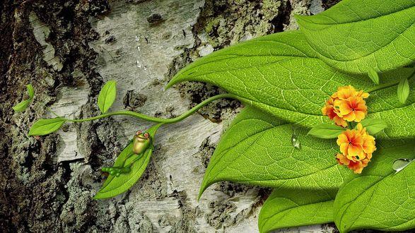 Обои Ствол дерева с цветами и зелеными листьями, на одном из которых отдыхает зеленый лягушонок