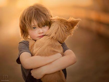 Обои Мальчик со щенком на руках, ву Jessica Drossin