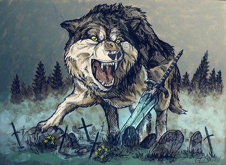 Обои Волк из компьютерной игры Темные души / Dark Souls / возле меча, на кладбище с могилами
