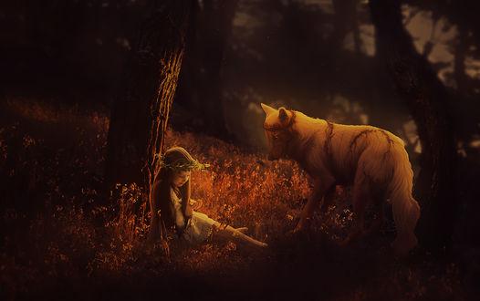 Обои Девочка сидит в лесу и смотрит на бабочку в своей ладони, рядом с ней стоит белый волк увитый колючей окровавленной проволокой, охраняя ее покой, by Thecallybear