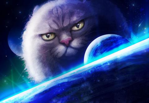 Обои Огромный кот, очень похожий на планету, в космосе