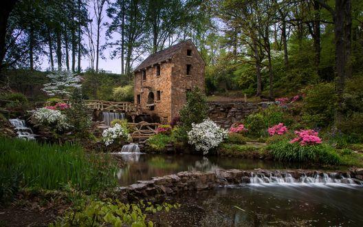 Обои Водяная мельница расположенная в лесу, у реки, среди множества цветов