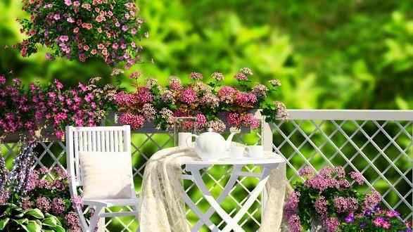 Обои Завтрак в саду на фоне цветов, ограждения, размытой зелени