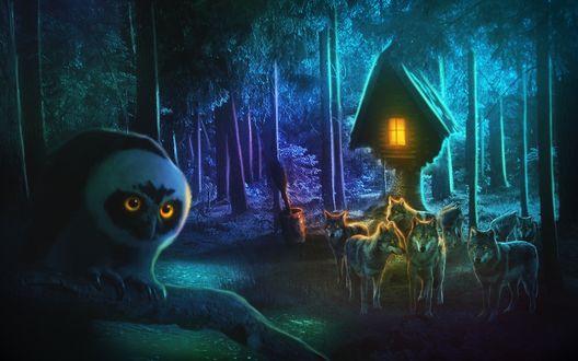 Обои Филин с желтыми глазами сидит на ветке, стая волков стоят внизу возле деревянного домика на пне дерева, у дерева стоит ступа с метлой