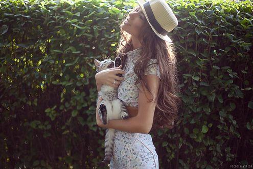 Обои Девушка с котенком в руках