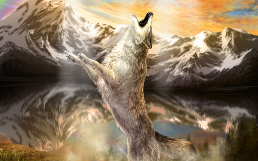 Обои Волк стоит на задних лапах на фоне гор