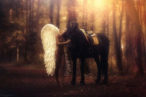 Обои Обнаженная девушка ангел стоит рядом с вороным конем в осеннем лесу