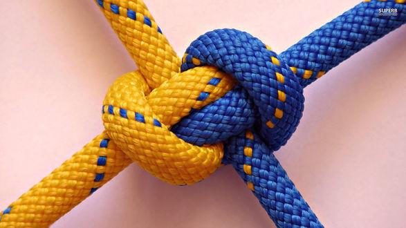 Обои Узел из желто-синих канатов, который никому не под силу развязать