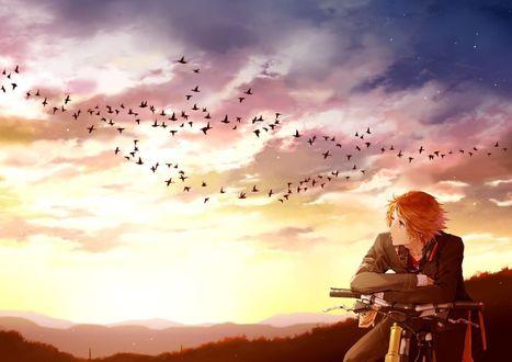 Обои Парень сидит на велосипеде и смотрит на пролетающих в небе птиц