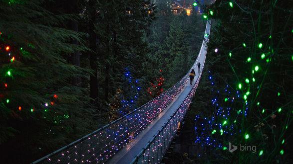 Обои Подвесной мост, освещенный к празднику в Британской Колумбии / British Columbia/, Канада / Canada/, bing