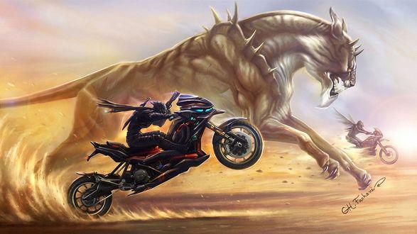 Обои Состязание в скорости мотоциклистов и дикого зверя монстра