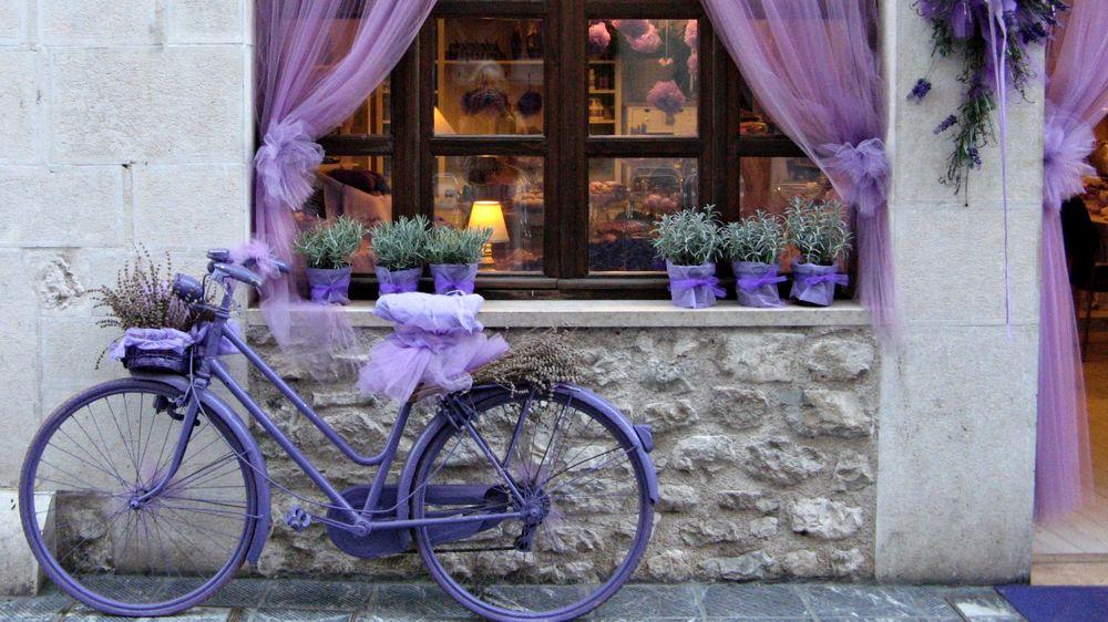 Цветы для кафе
