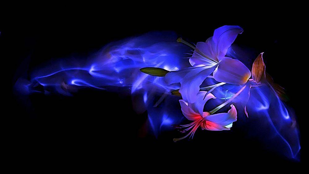 преимущества картинки божественного синего и черного цвета виник это современный