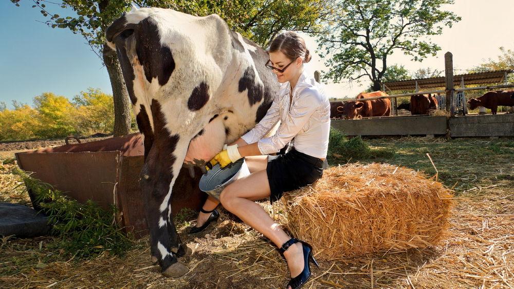 покажу девушк на половину корова скользящая синхронизатора Лада