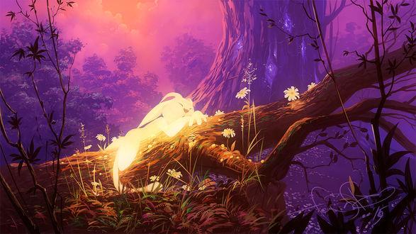 Обои Спящий зайчик в сказочном лесу, by fear-sAs