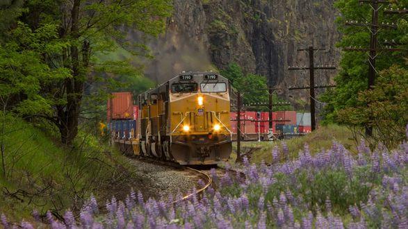 Обои Среди гор, леса, цветов едет поезд по железной дороге