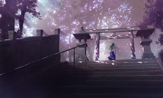 Обои Sanae Kochiya из серии компьютерных игр Touhou Project / Проект «Восток» стоит спиной на верхней ступени лестницы перед воротами к храму