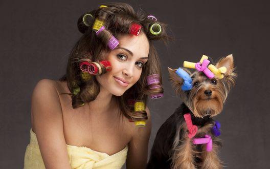 Обои Девушка с собачкой, волосы накручены на бигуди