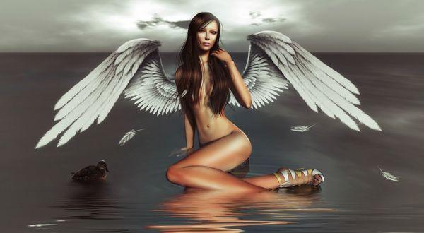 Обои Обнаженная девушка Ангел с белыми крыльями за спиной сидит на воде, рядом плавает утка