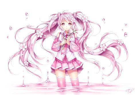 Обои Vocaloid Hatsune Miku (Sakura Miku) / Вокалоид Хатсунэ Мику (Сакура Мику), art by Tidsean