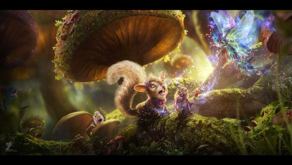 Обои Зверьки сидят под грибом и смотрят на подлетающую к ним фею