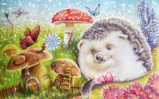 Обои Ёжик сидит возле грибов-домиков напротив мышки, над ним летает голубая бабочка