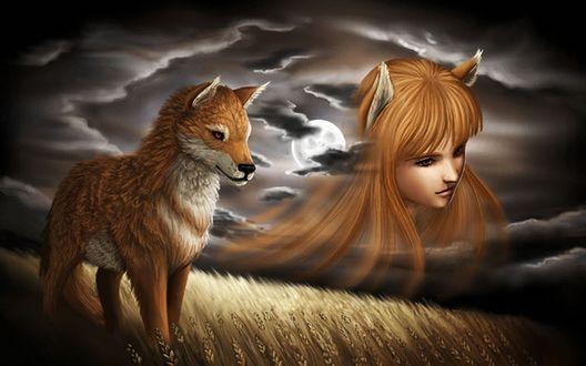 Обои Среди поля с растущей пшеницей стоит лиса, на фоне облачного ночного неба виден силуэт девушки лисички, с ушками и рыжими волосами