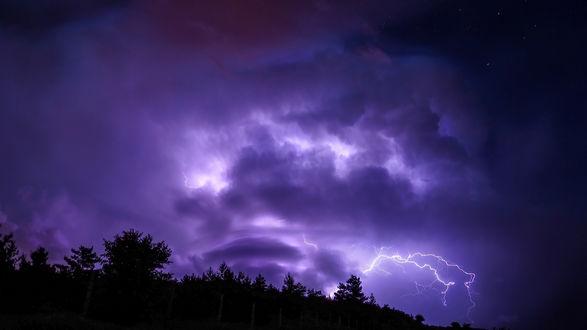 Обои Молния в грозовом облаке над верхушками деревьев
