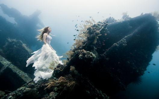 Обои Девушка в белом платье стоит на скале под водой
