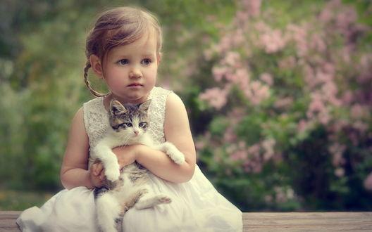 Обои Милая девочка держит на руках маленького котенка
