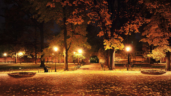 Как меняются улицы ночью осенней