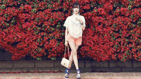 Обои Группа Girls Generation, k-pop, азиатка в шортах с сумкой позирует на фоне цветущих кустов, Южная Корея