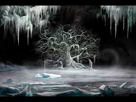 Обои Замерзшее дерево среди льдов