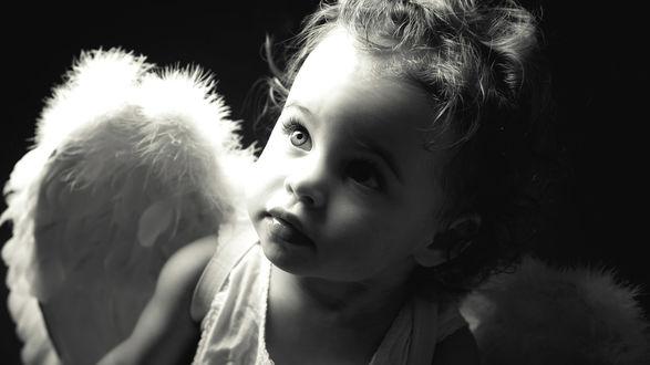 Обои Ребенок с крыльями ангела
